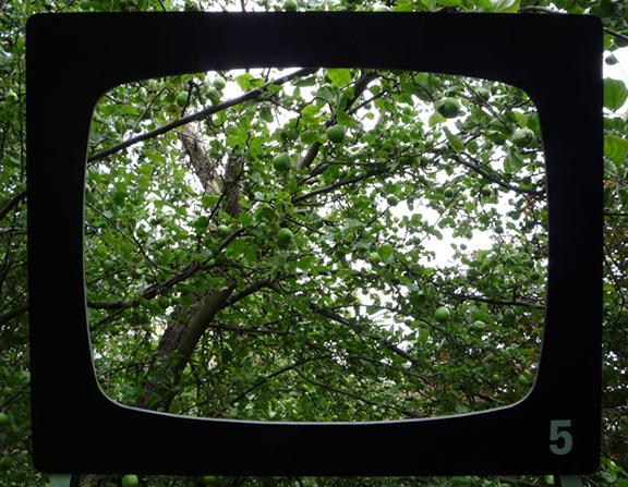 Fernsehgarten | Die Reifeprüfung | © Marcus Müller