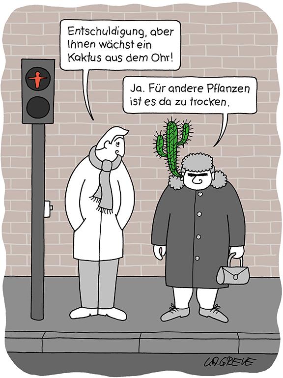Cartoon | Kaktus | © Katharina Greve
