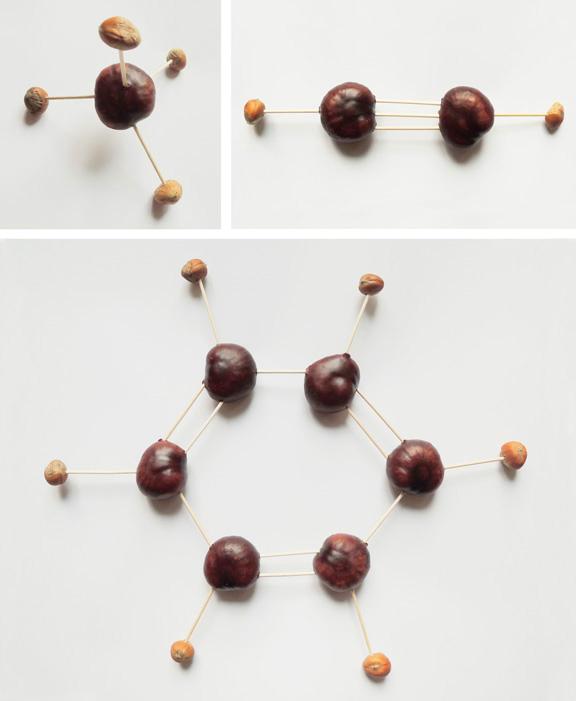 Kastanien-Kohlenwasserstoffe | © Katharina Greve