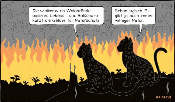 Cartoon | Waldbrände Brasilien | © Katharina Greve